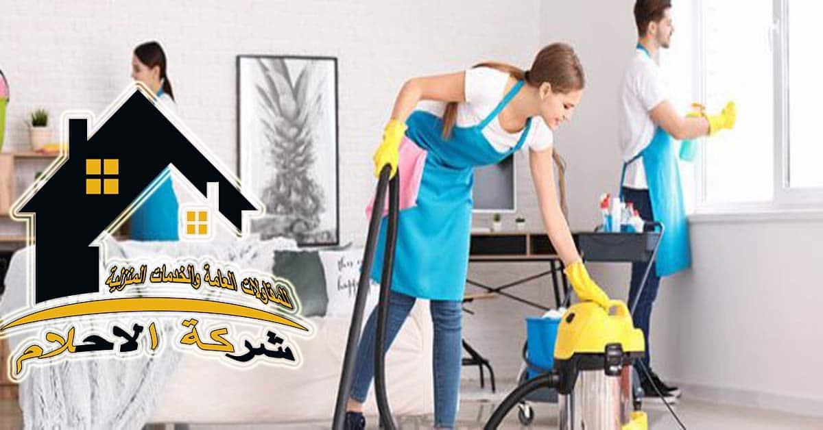 أساسيات تنظيف المنزل